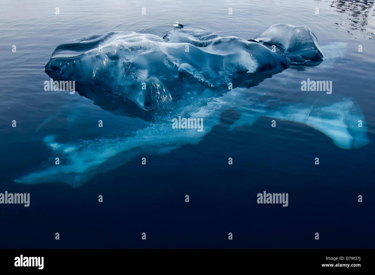 Black Ice, Bahía Paraíso, en la Península Antártica, en la Antártida Imagen De Stock