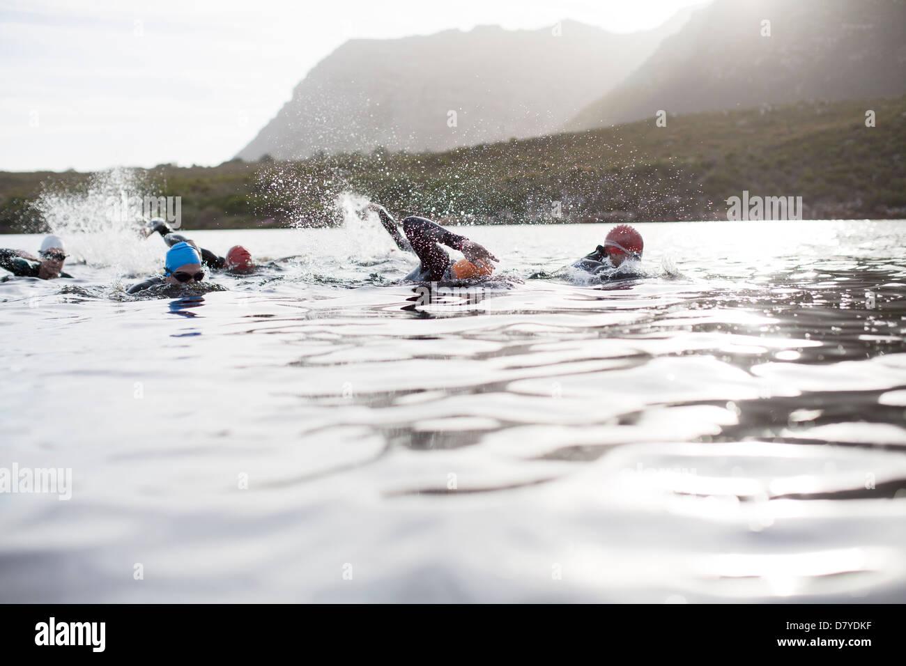 Triatletas nadar Imagen De Stock