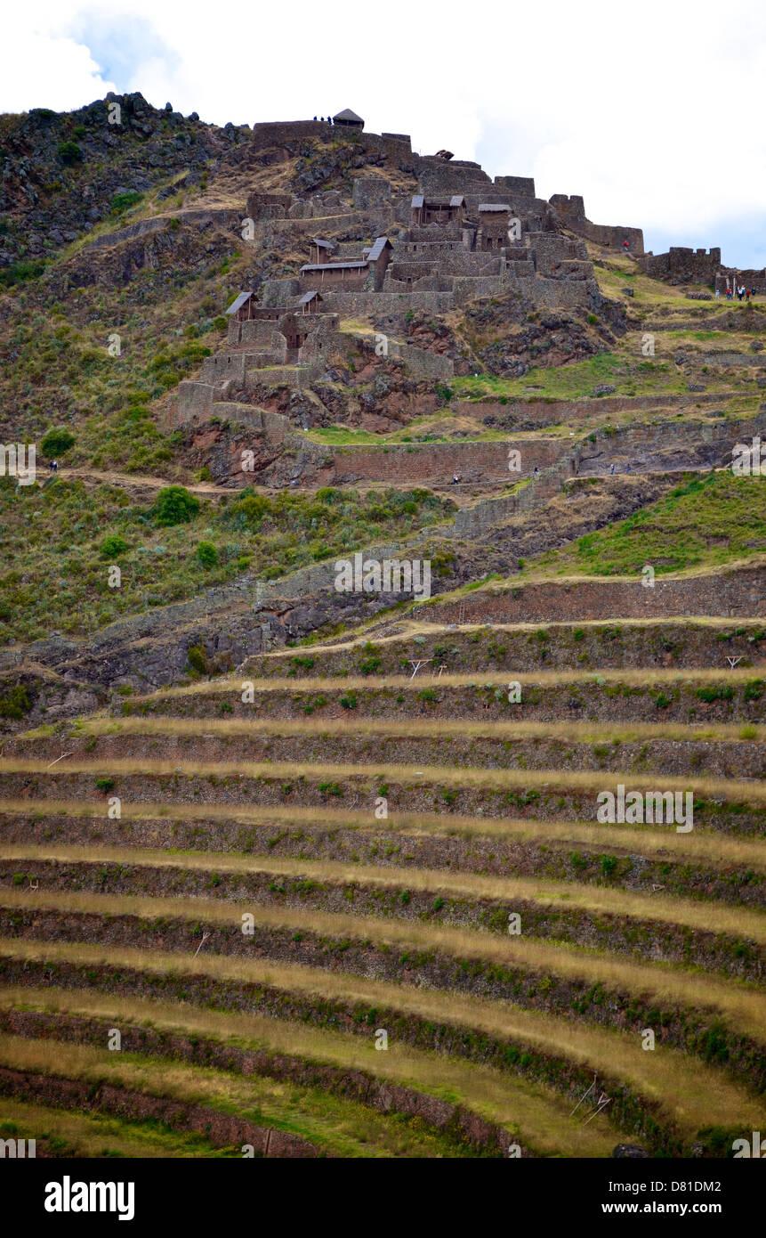 Inca Terrazas De Piedra En El Sitio Arqueológico De Pisaq