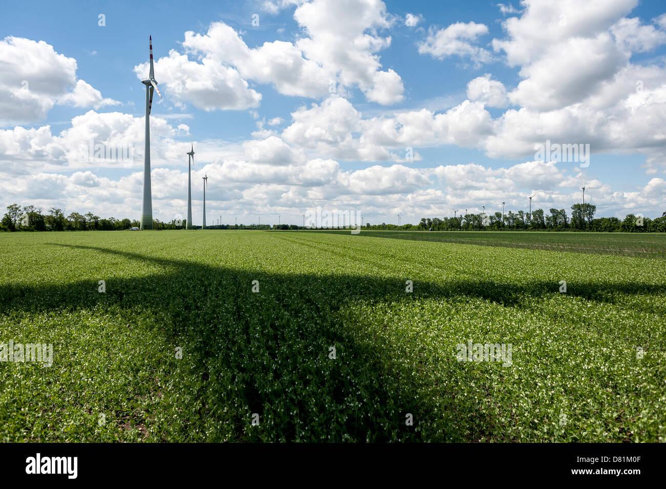 Fuente renovable de energía eólica en un campo de Marchfeld, Baja Austria, Austria Imagen De Stock