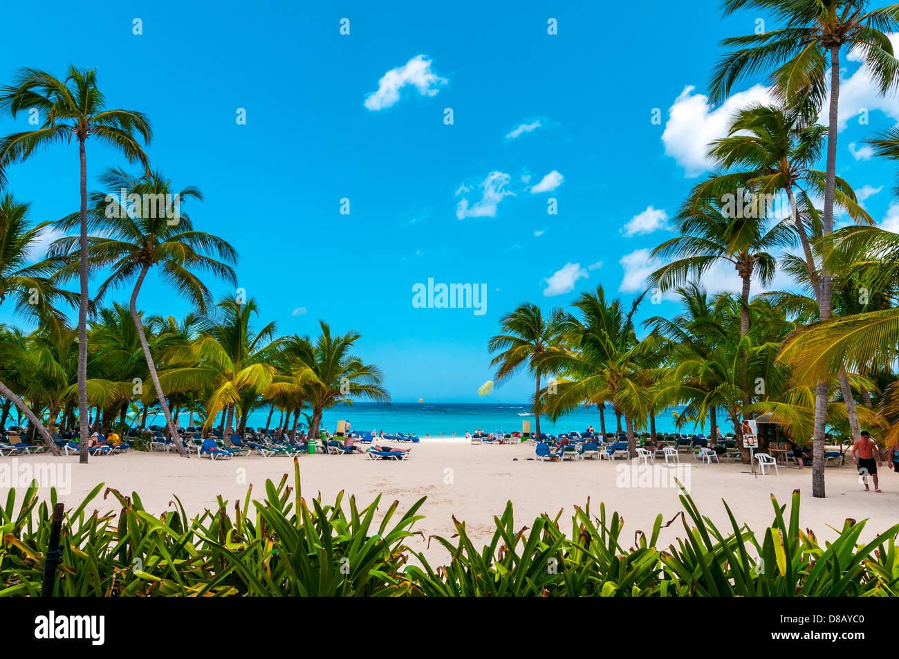 Playa, Riu Palace; Hotel; Punta Cana, República Dominicana; Caribe Imagen De Stock