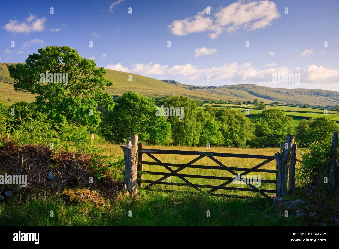 Paisaje rural Y Mynydd Llanddeusant (Du) Black Mountain Parque Nacional de Brecon Beacons Carmarthenshire Gales Imagen De Stock