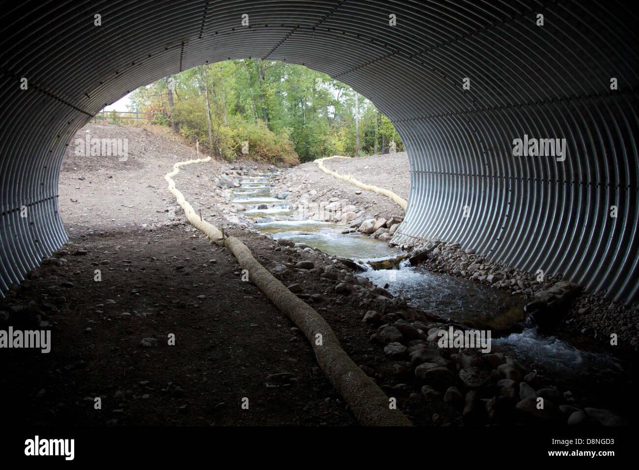Wildlife cruce construido bajo la autopista. Foto de stock