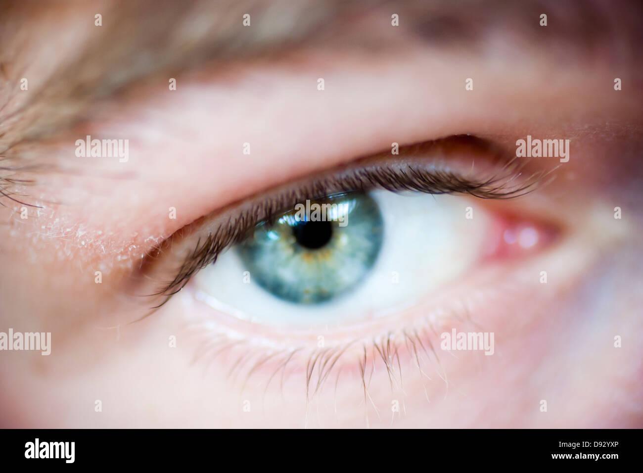 Blue Eye, close-up Imagen De Stock