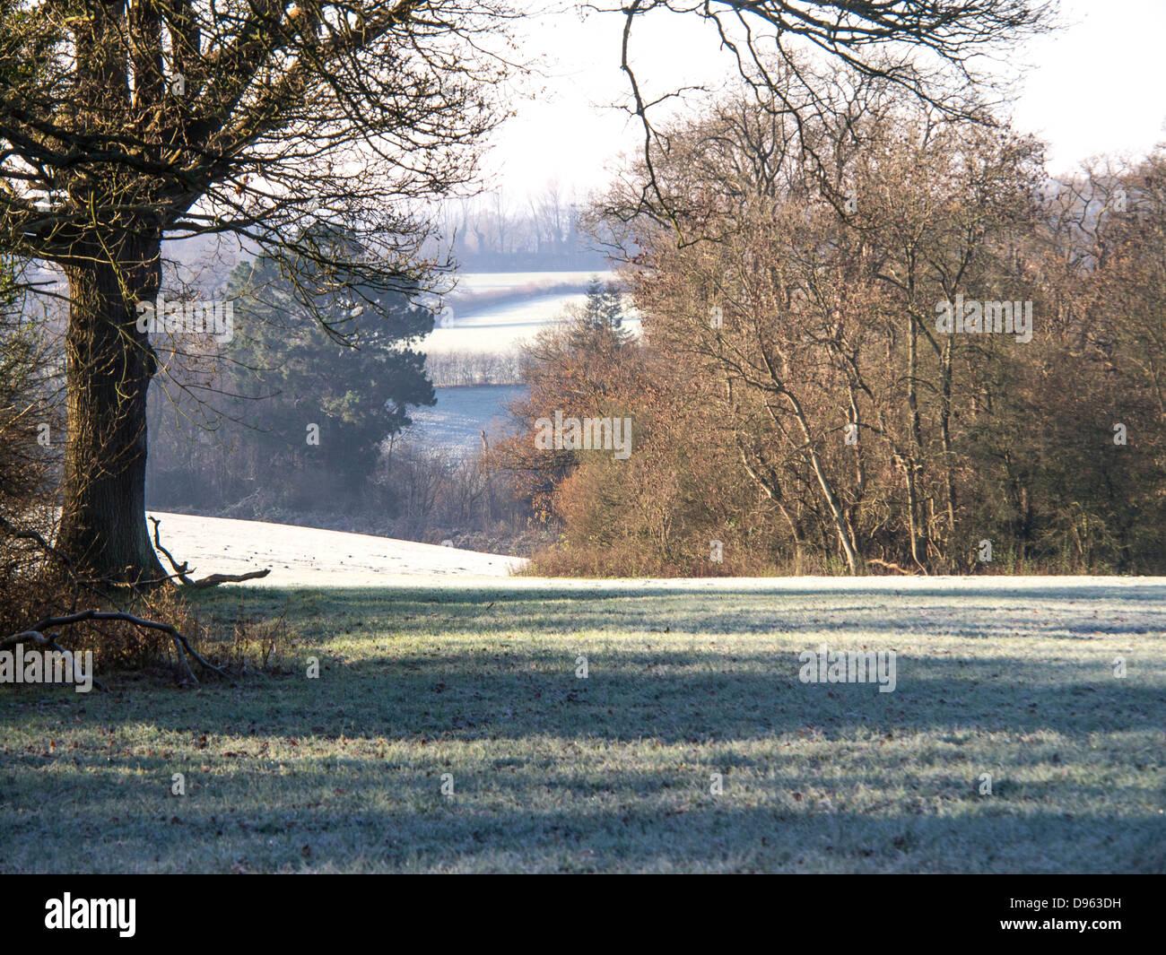 Los campos de pastoreo con escarcha en noviembre frío, en Kent, Inglaterra. Foto de stock