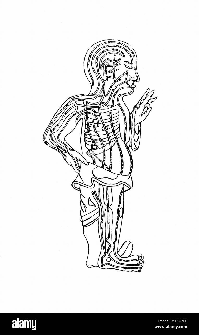Gráfico de acupuntura xilografía del siglo XIX. Imagen De Stock