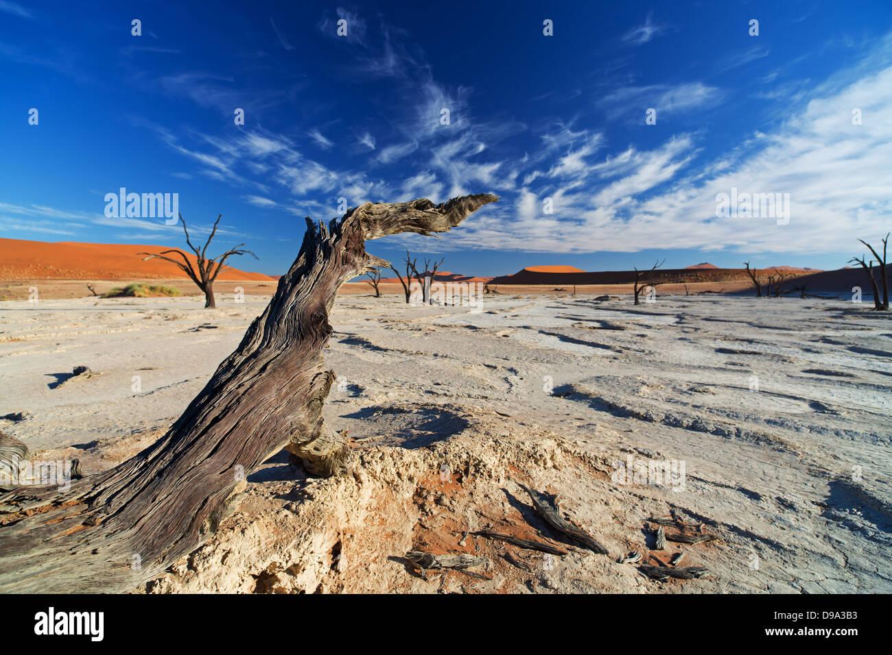 Sossusvlei, Sossusvlei, Sesriem, Namib, Namibia, desierto, Wüste, Wueste Imagen De Stock