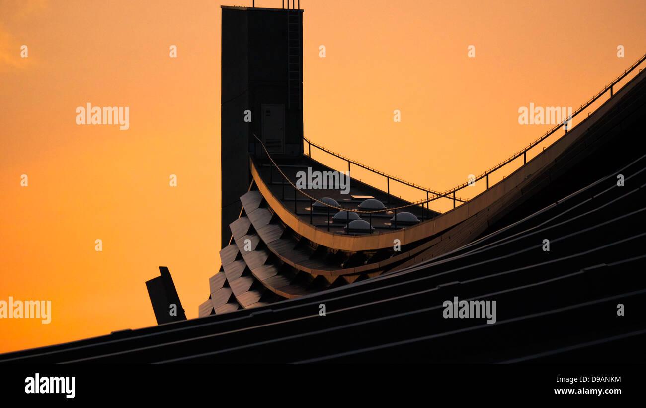 Acercar la suspensión del techo del gimnasio Nacional Yoyogi en la noche resplandor dorado Foto de stock