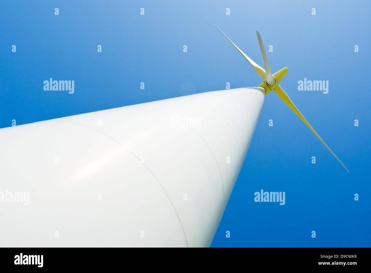 Producción de energía eólica molino en un campo de colza Imagen De Stock
