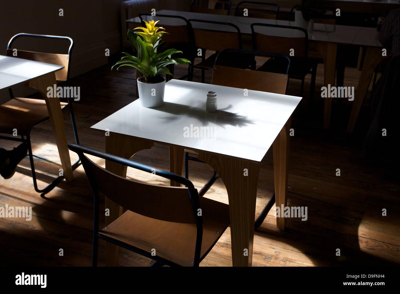 Interior de una foto de una mesa con sillas y una planta en la mesa. Foto de stock