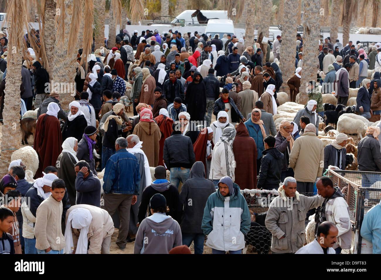 Mercado de ganado semanal en Douz con, en el sur de Túnez, África Foto de stock