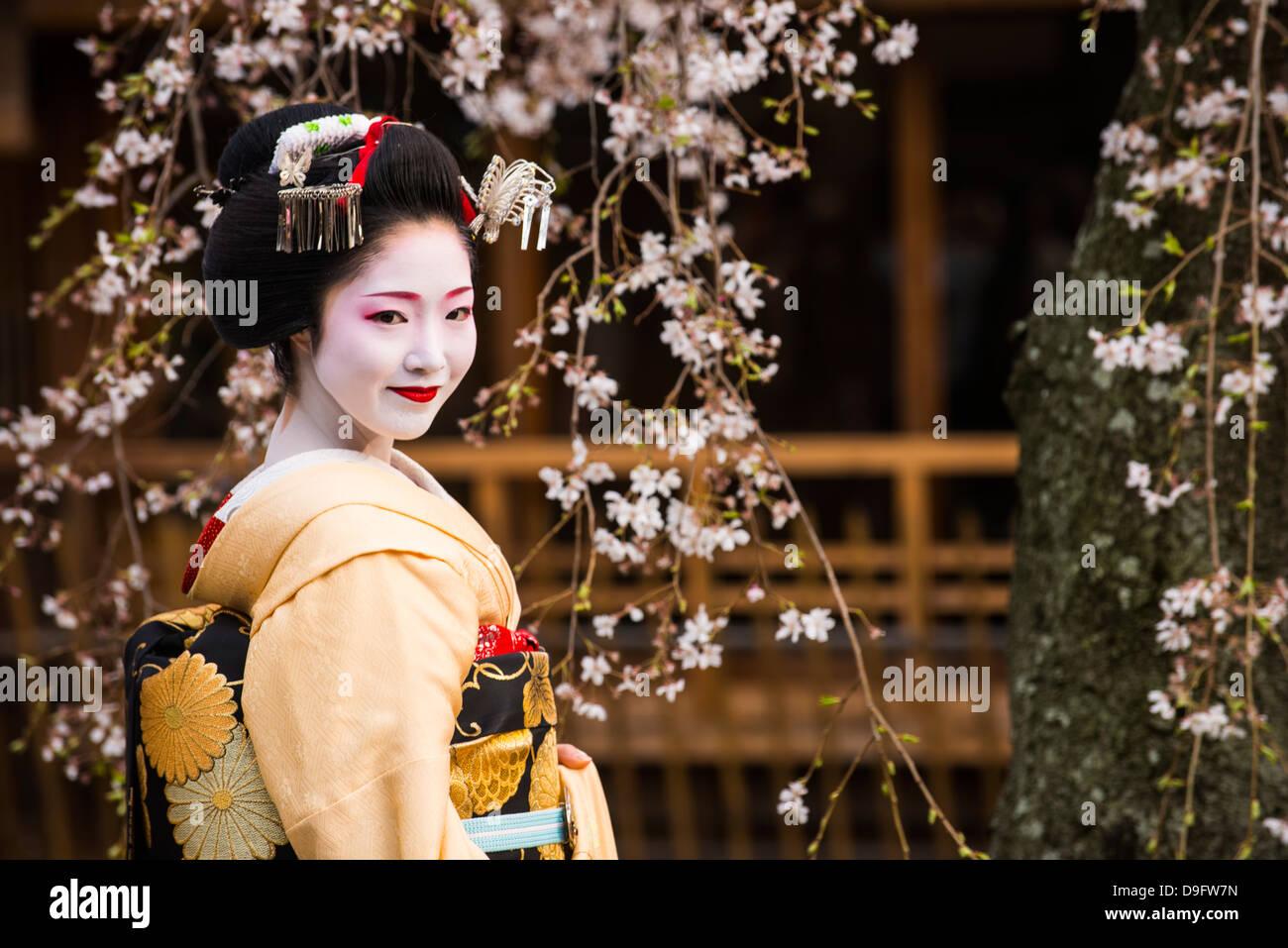 Geisha Real posando ante un árbol de cerezo en flor en el barrio de Geisha de Gion en Kyoto, Japón Foto de stock