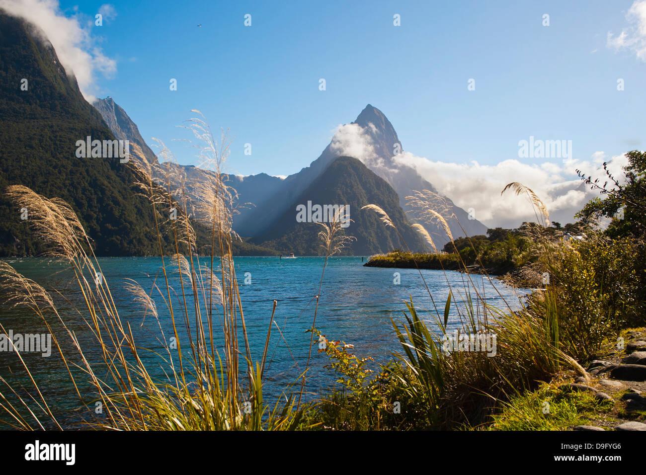 Mitre Peak, Milford Sound, el Parque Nacional Fiordland, Sitio del Patrimonio Mundial de la UNESCO, Isla del Sur, Imagen De Stock