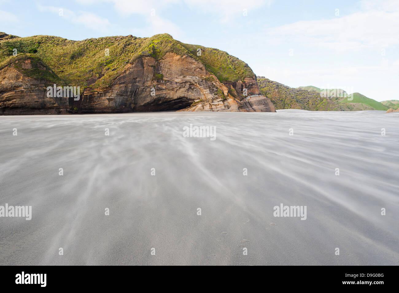 Soplado de arena a lo largo de windy Wharariki Beach, Bahía Dorada, Región de Tasmania, Isla del Sur, Nueva Zelanda Foto de stock