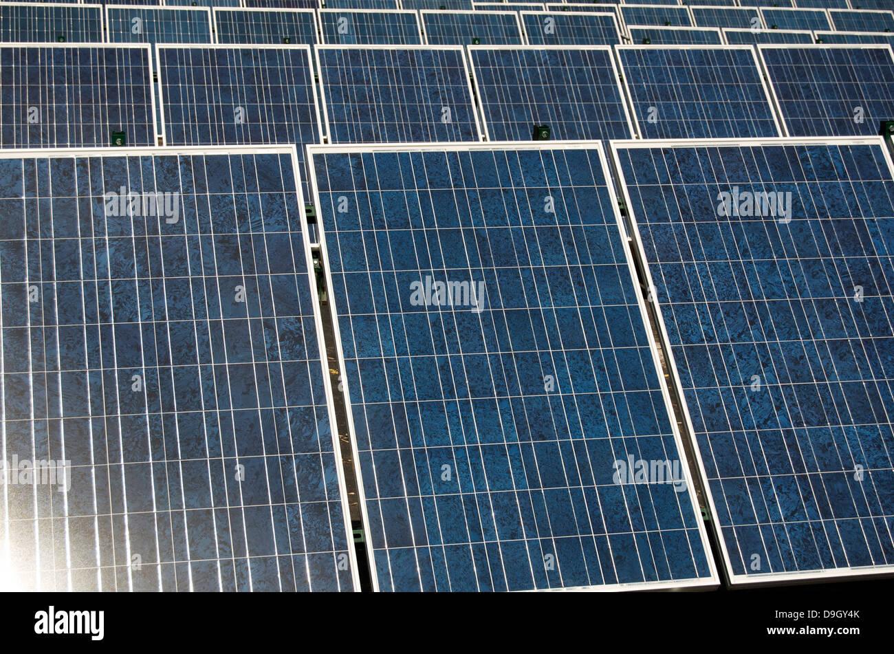 Paneles solares en una fila recogiendo luz Imagen De Stock
