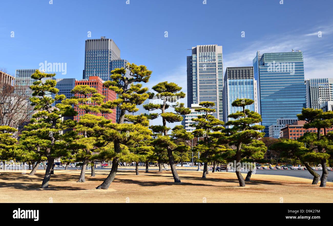 Tokio, Japón, del distrito de negocios de Marunouchi, vista desde los jardines del Palacio Imperial de Tokio. Imagen De Stock