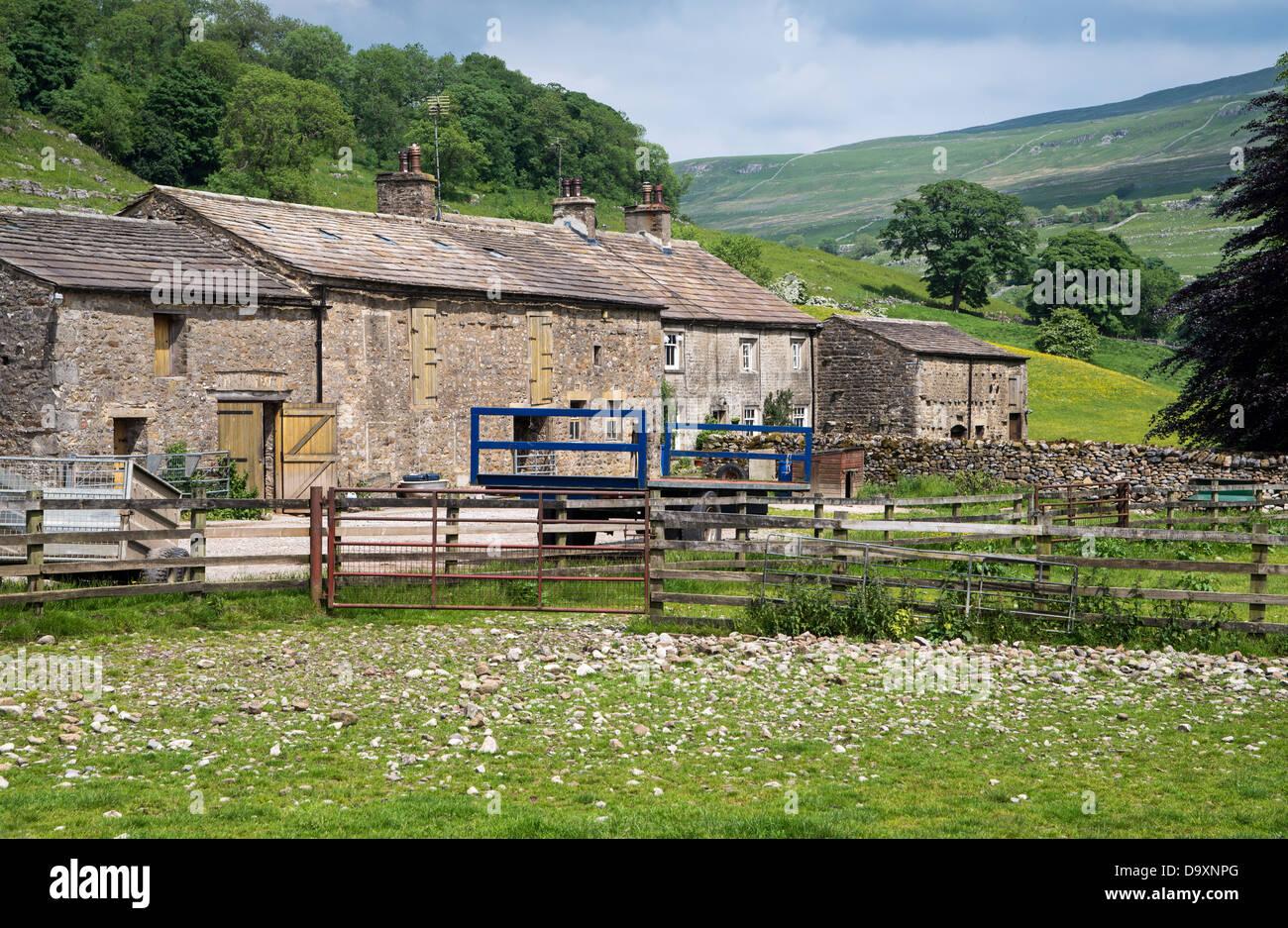 Dales la granja en la pequeña aldea de Hubberholme, Wharfedale, Yorkshire Dales, en el camino Sendero de Larga Distancia Foto de stock