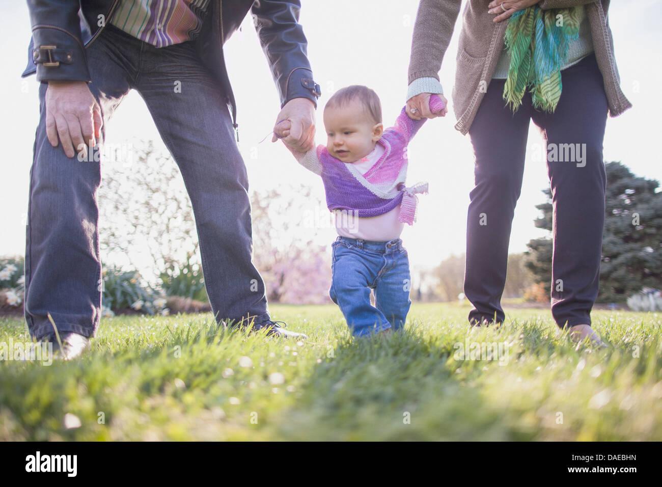 Los abuelos celebración nieta de manos en park Imagen De Stock