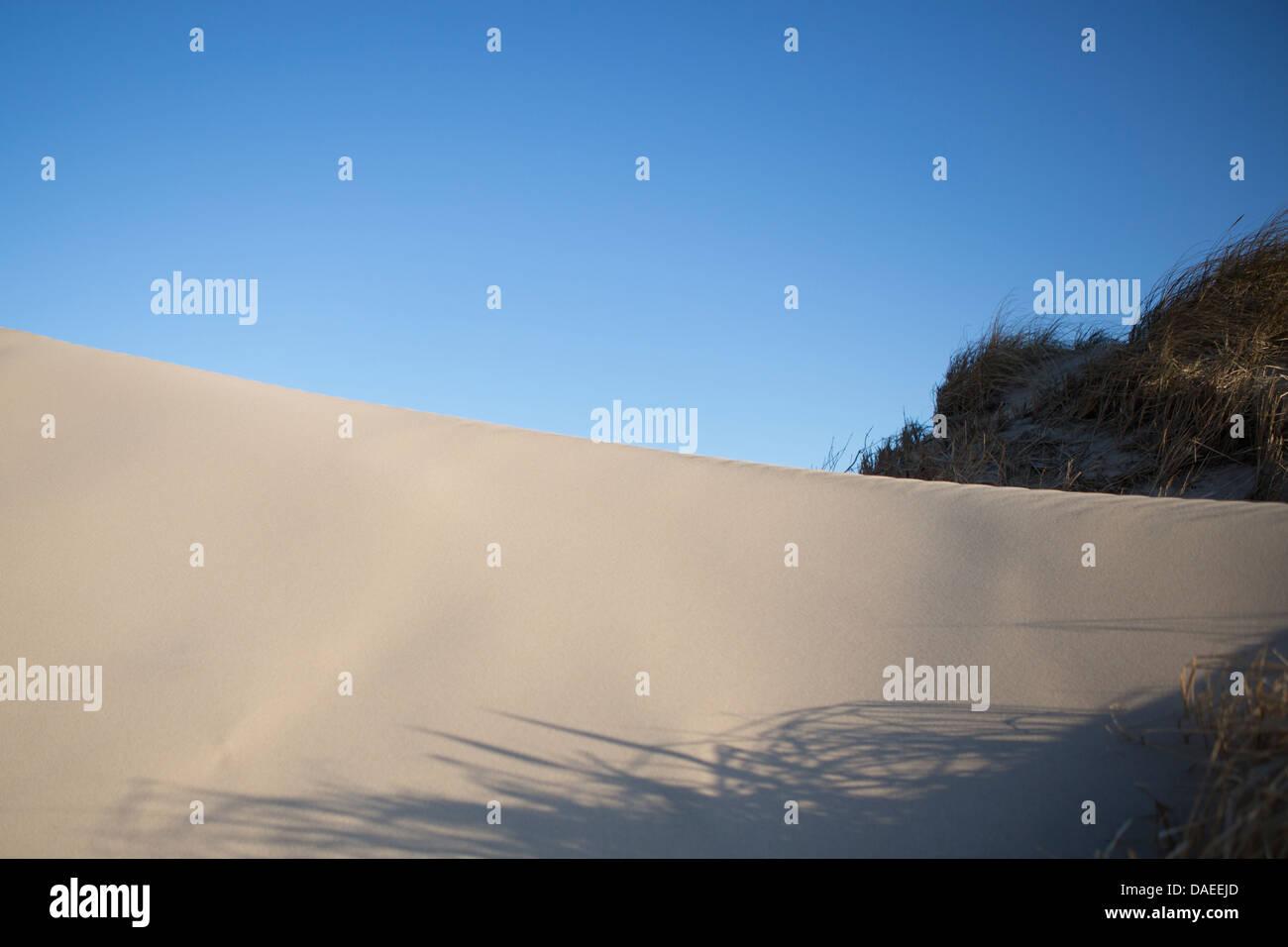 Una duna de arena, cielos azules, algunos vegitation Foto de stock