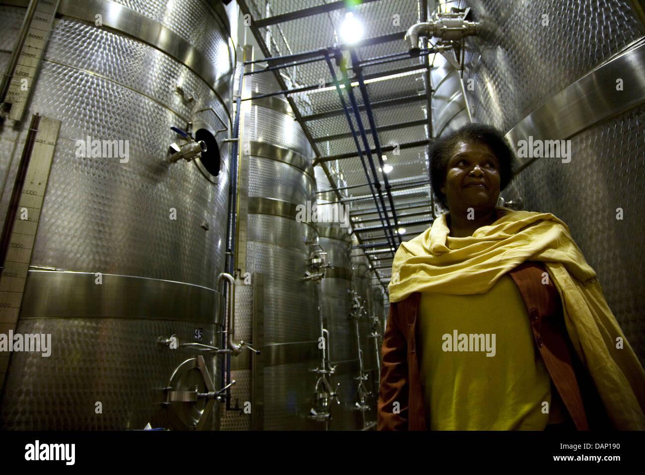 Los visitantes ver colección privada de arte sacro Wine Estate Stellenbosch Nonceba Hazendal Shoba Bahía Nelson Mandela Municipio Foto de stock