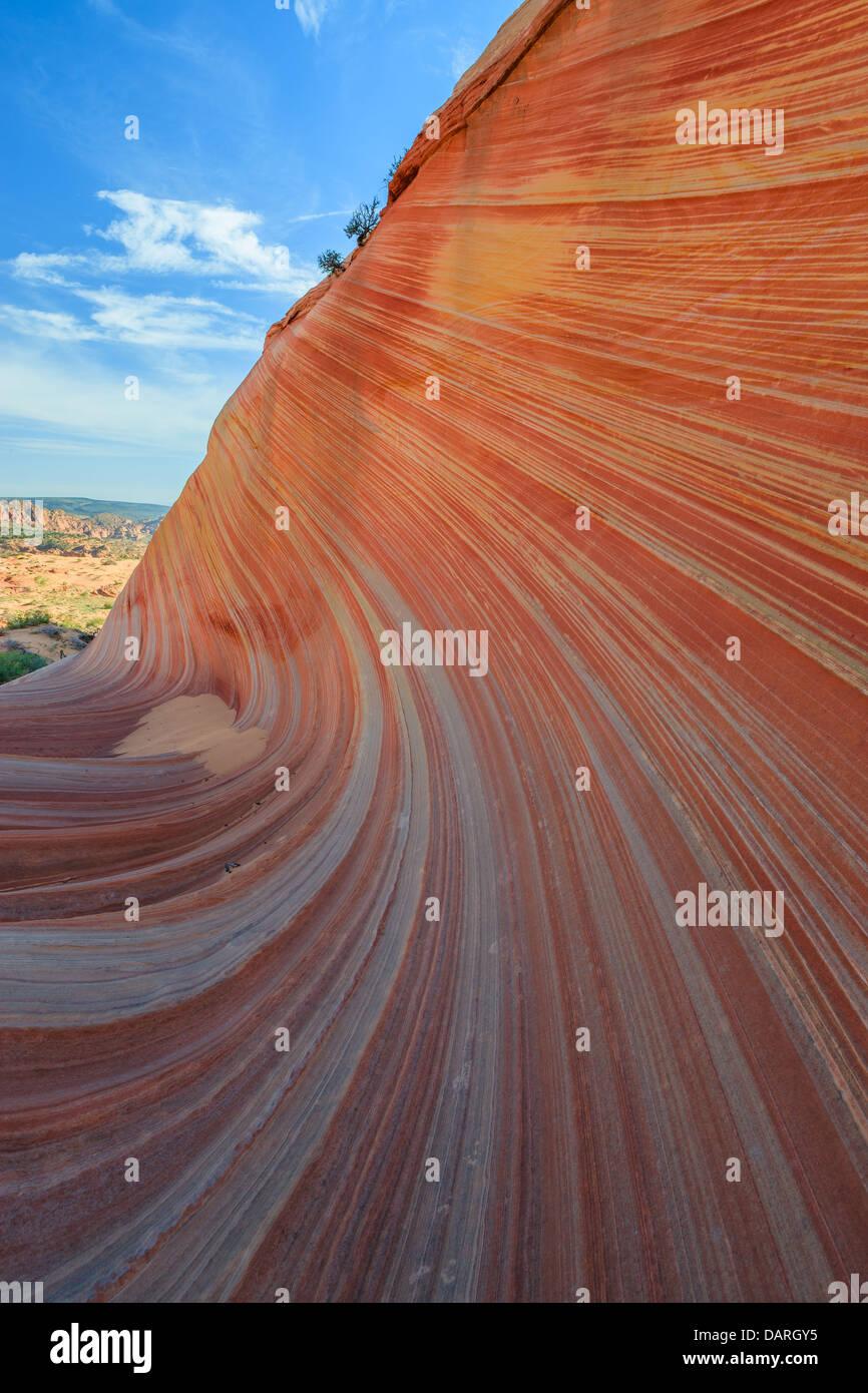 Formaciones rocosas en el norte Coyote Buttes, parte del Monumento Nacional Vermilion Cliffs. Esta área también Foto de stock