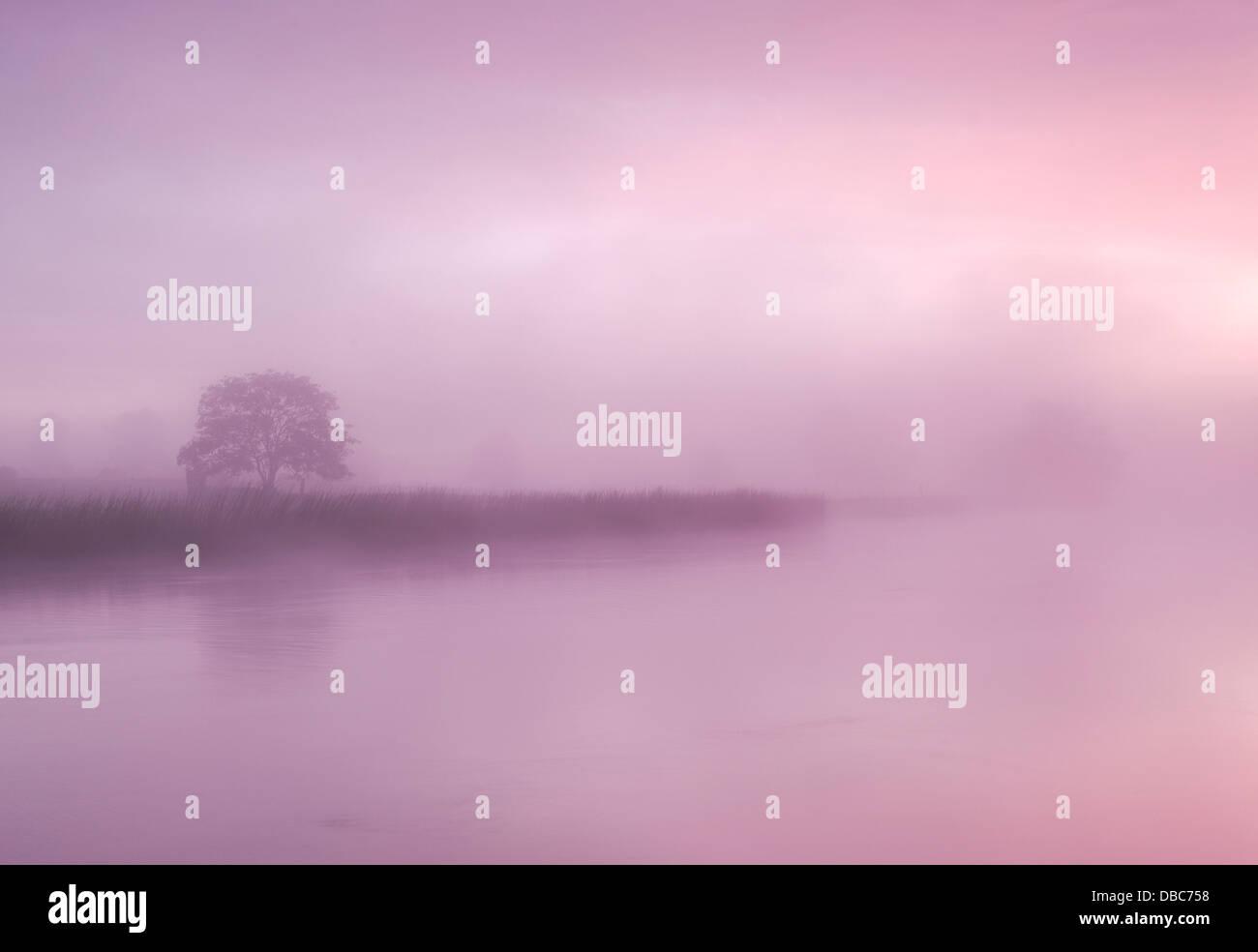 Paisajes irlandeses, Misty mañana a orillas del río Boyne, Condado de Meath Irlanda Imagen De Stock