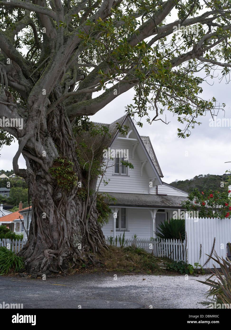 Dh Russell DE LA BAHÍA DE LAS ISLAS DE NUEVA ZELANDA Moreton Bay ...