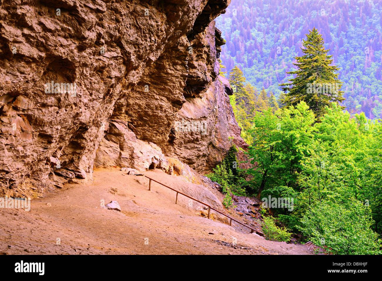 Cueva de alumbre en el Great Smoky Mountains National Forest. Imagen De Stock