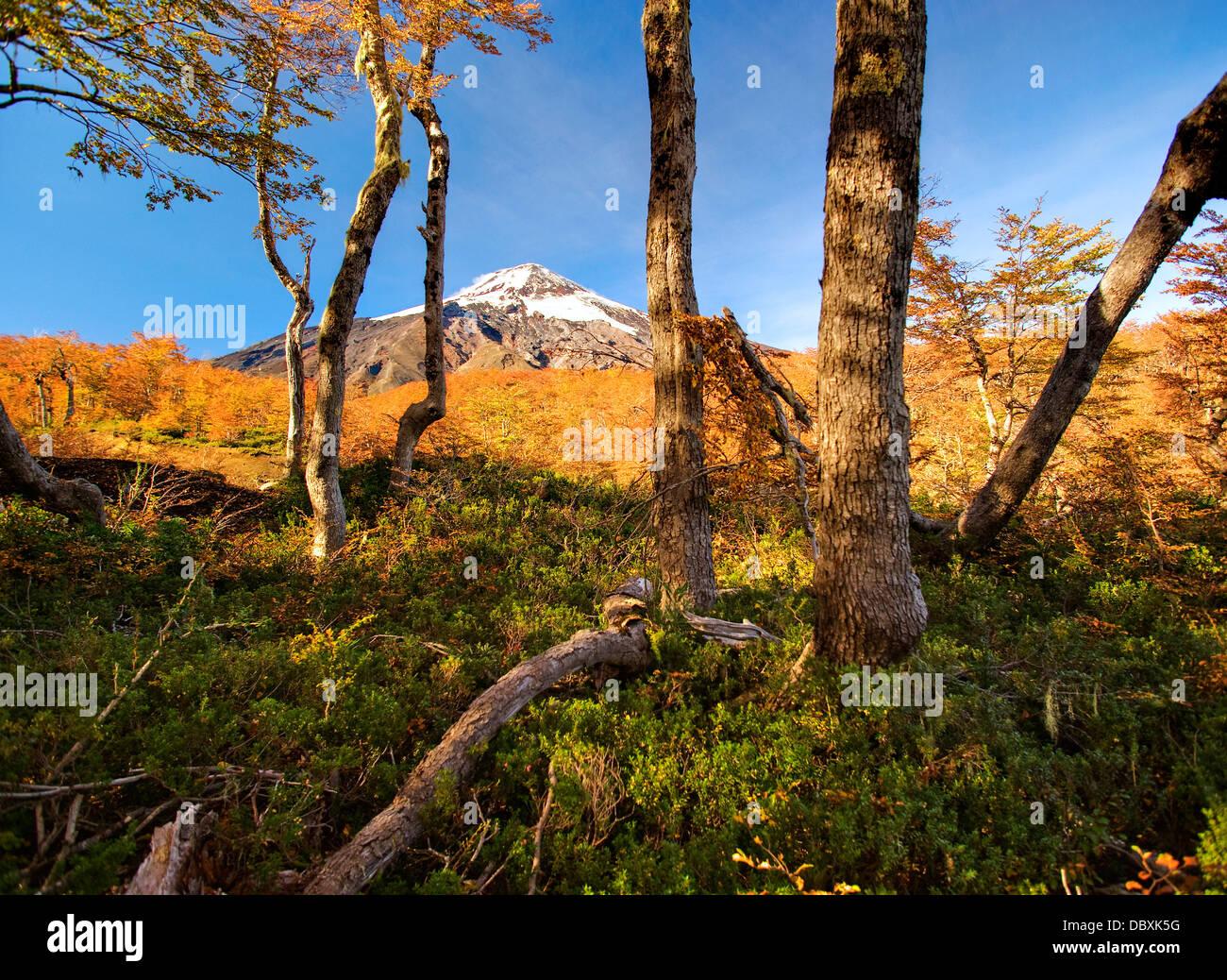 La zona de esquí de Pucón, Chile Imagen De Stock