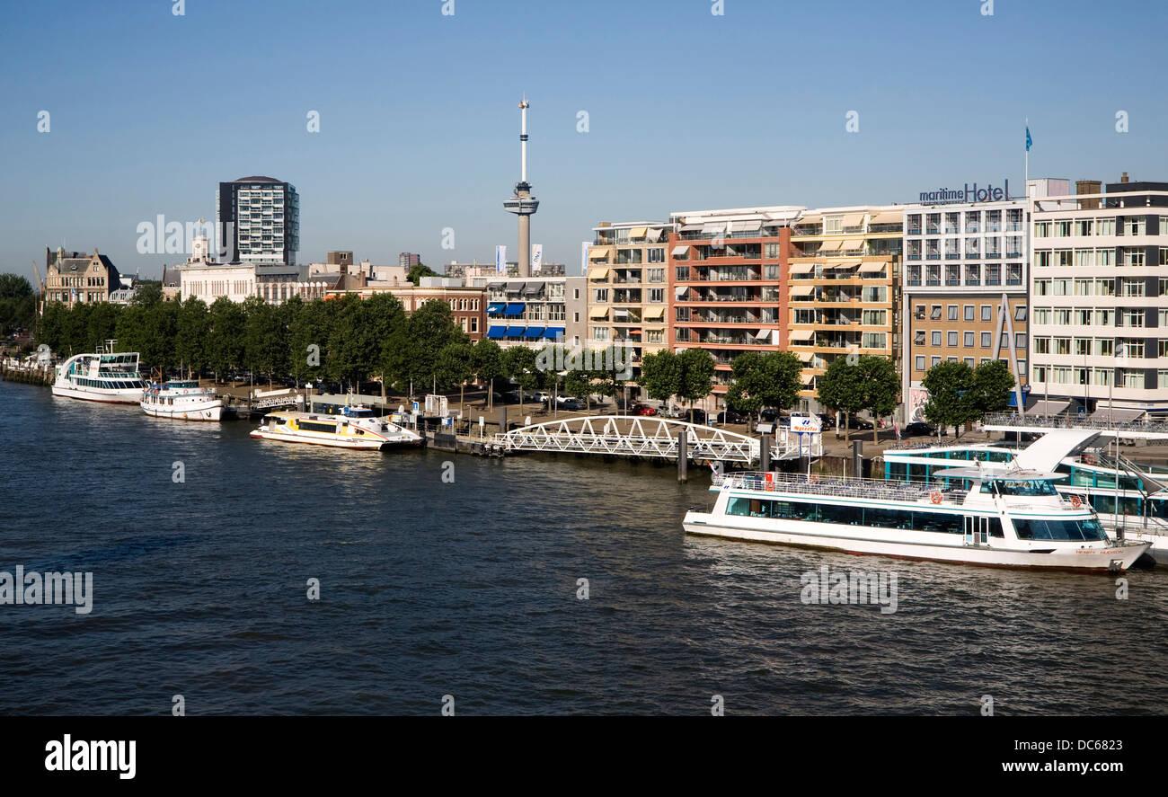 Spido viaje en bote río Maas Puerto de Rotterdam, Países Bajos Imagen De Stock