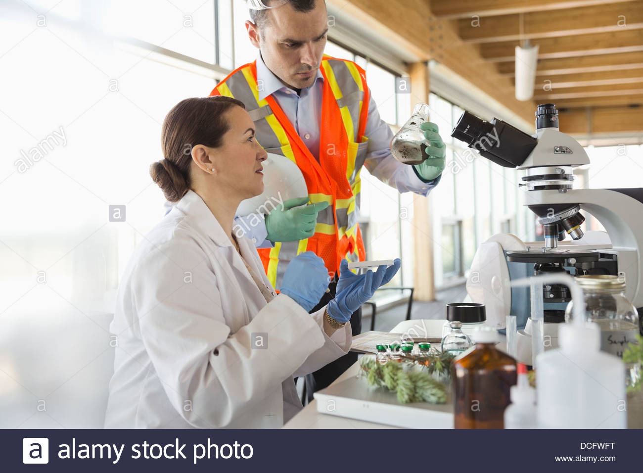 Los técnicos de analizar muestras de suelo en el laboratorio Imagen De Stock