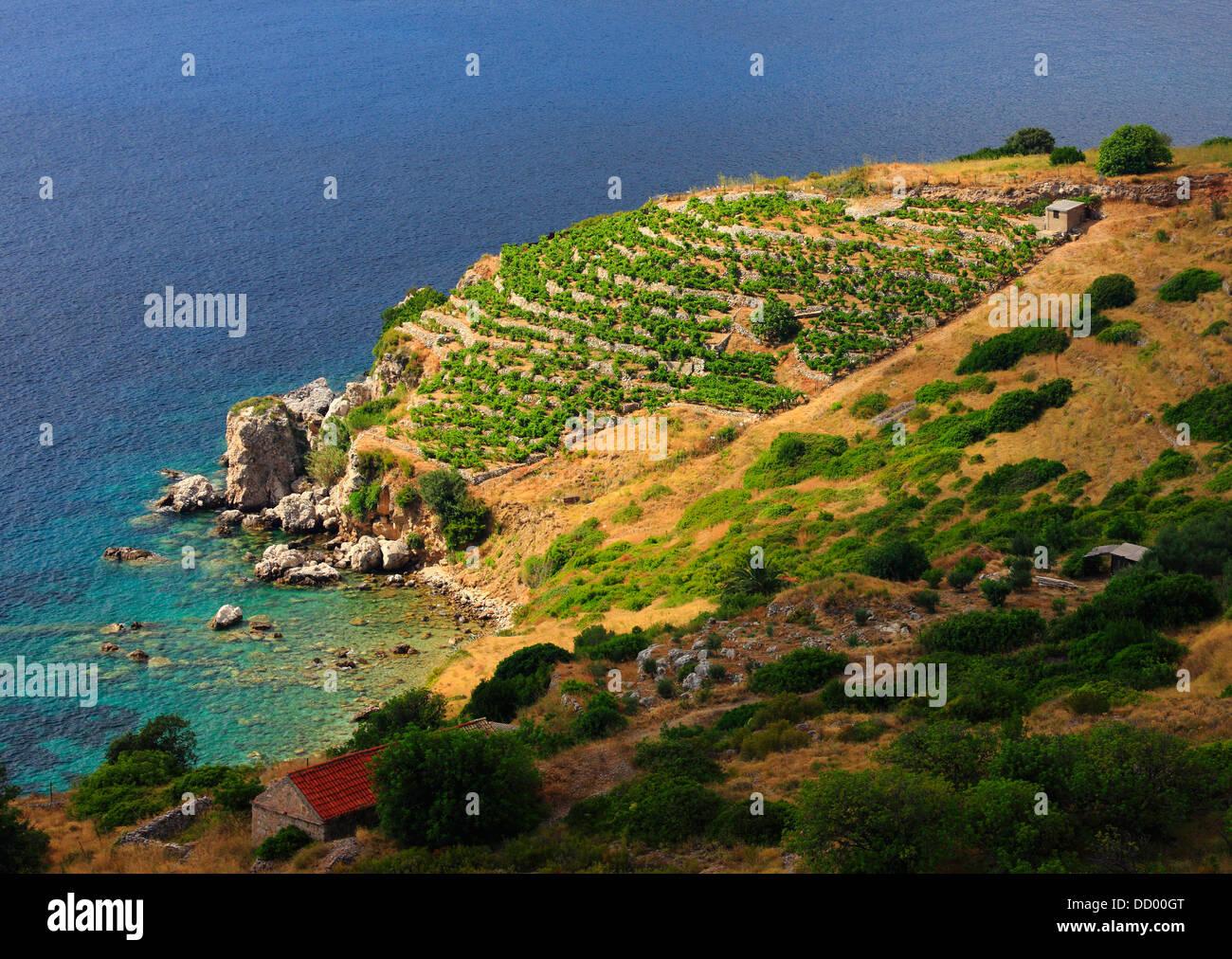 Viña del Mar en la isla de Vis en Croacia Foto de stock