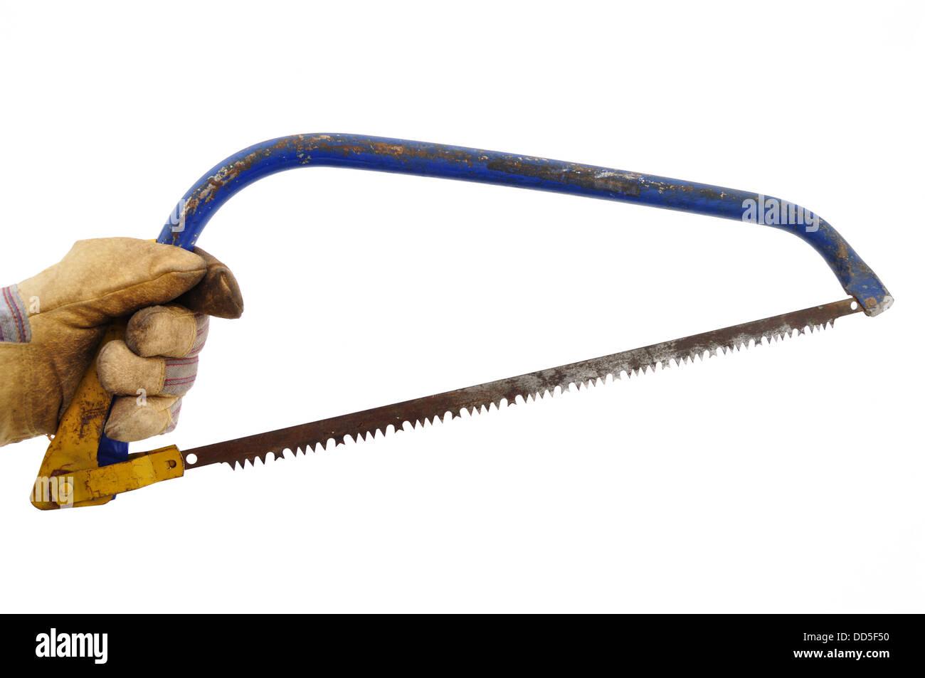 Jardinero sosteniendo una sierra de arco Foto de stock