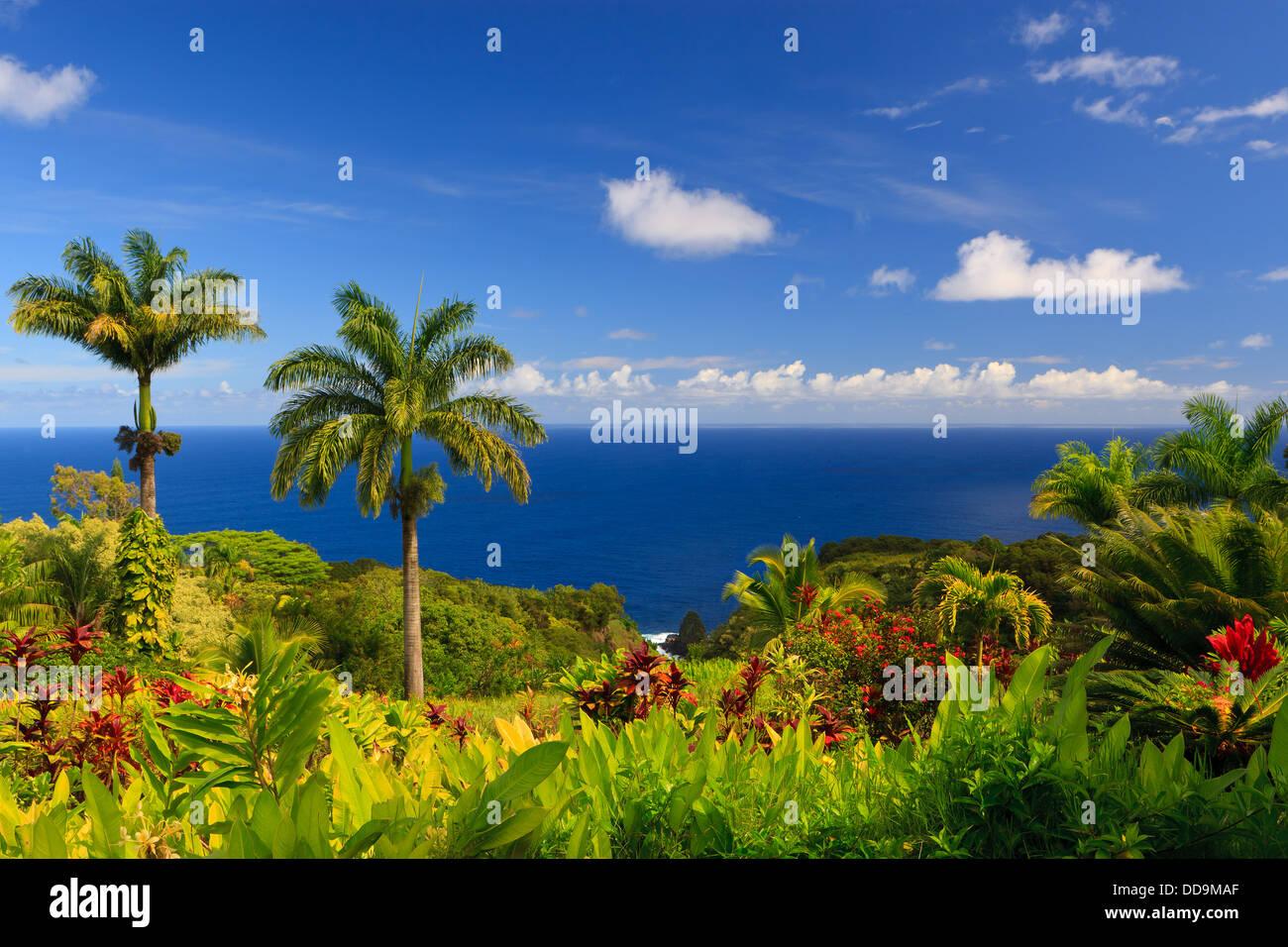Vista al mar desde el Jardín del Edén, Maui, Hawai Foto de stock