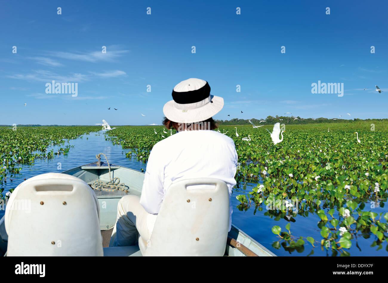 Brasil, el Pantanal: Mujer con sombrero de un viaje en barco por un lago con ninfas observando aves Imagen De Stock