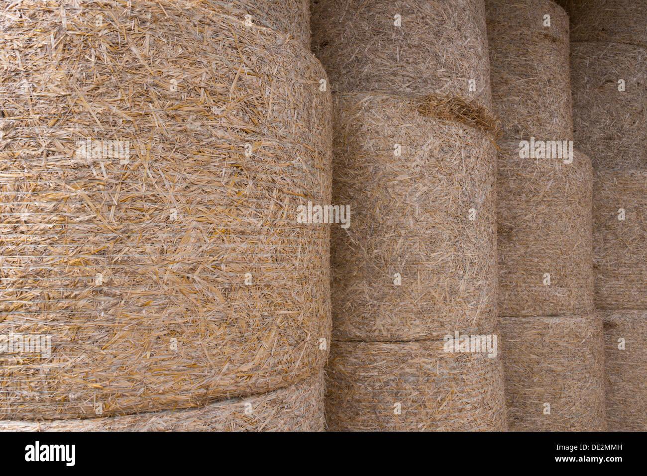 Los fardos de heno en la zona de Borgoña, Francia Foto de stock