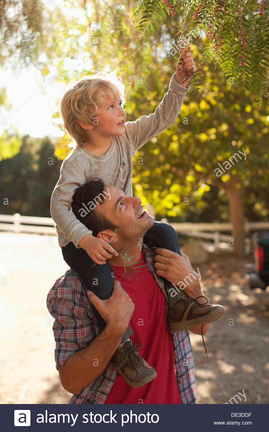 Hijo de padre llevar sobre los hombros Imagen De Stock