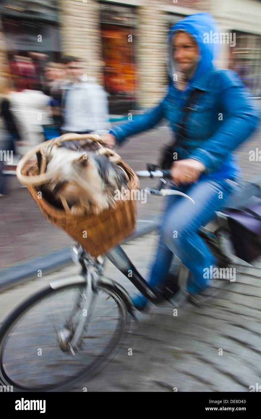 Ciclo de gente en brujas, brujas, Flandes, Bélgica, Sitio del Patrimonio Mundial de la UNESCO. Imagen De Stock