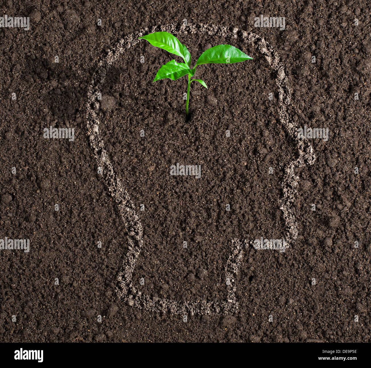 Crecimiento del joven idea dentro del contorno de la cabeza humana en concepto de suelo Imagen De Stock