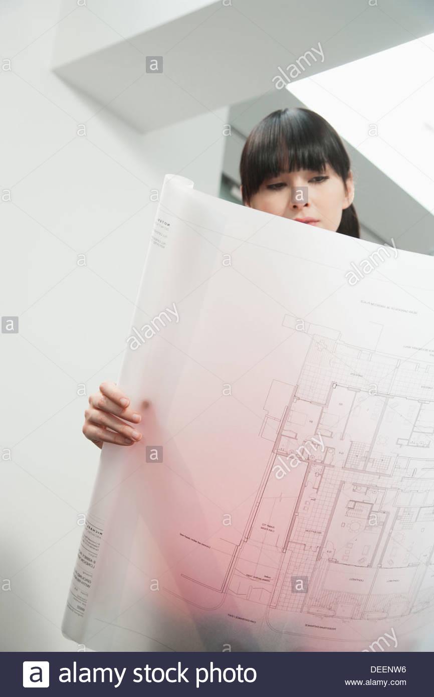 Arquitecto mirando los borradores en Office Imagen De Stock