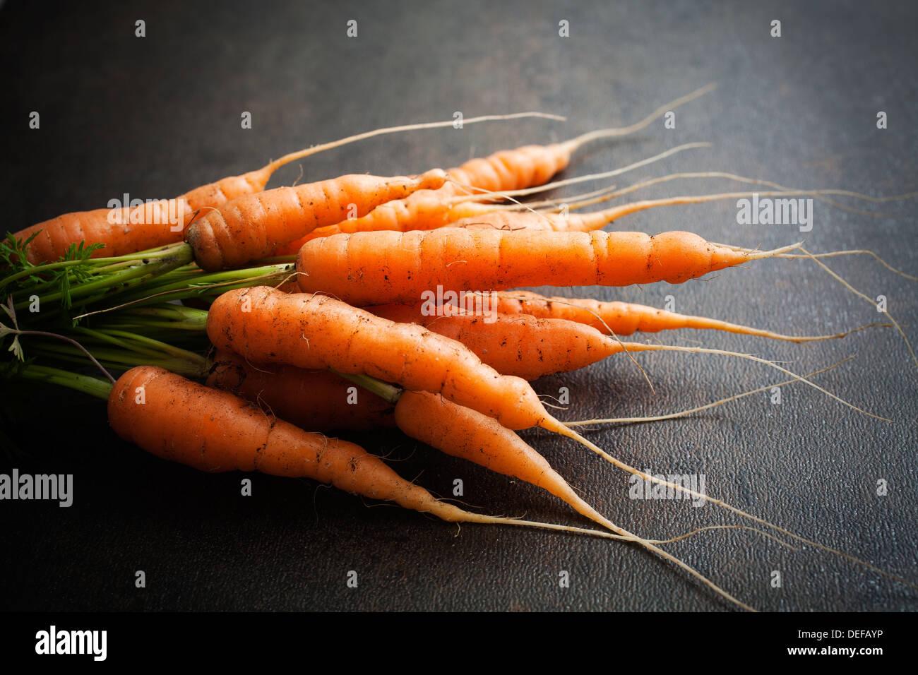 Montón de zanahorias frescas sobre fondo oscuro Foto de stock