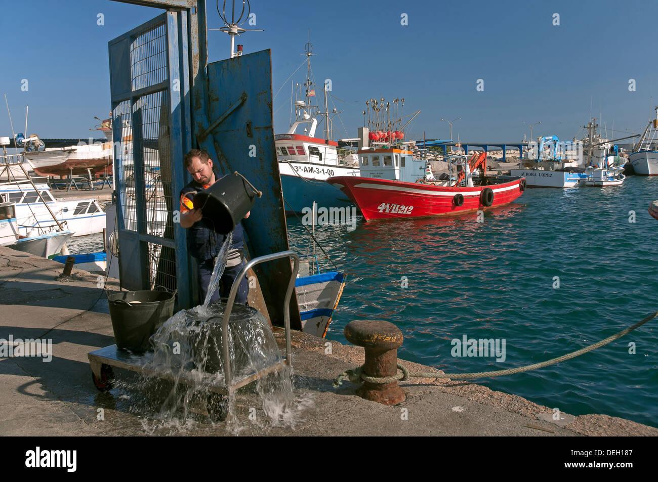 Puerto pesquero, Motril, provincia de Granada, Andalucía, España, Europa Foto de stock
