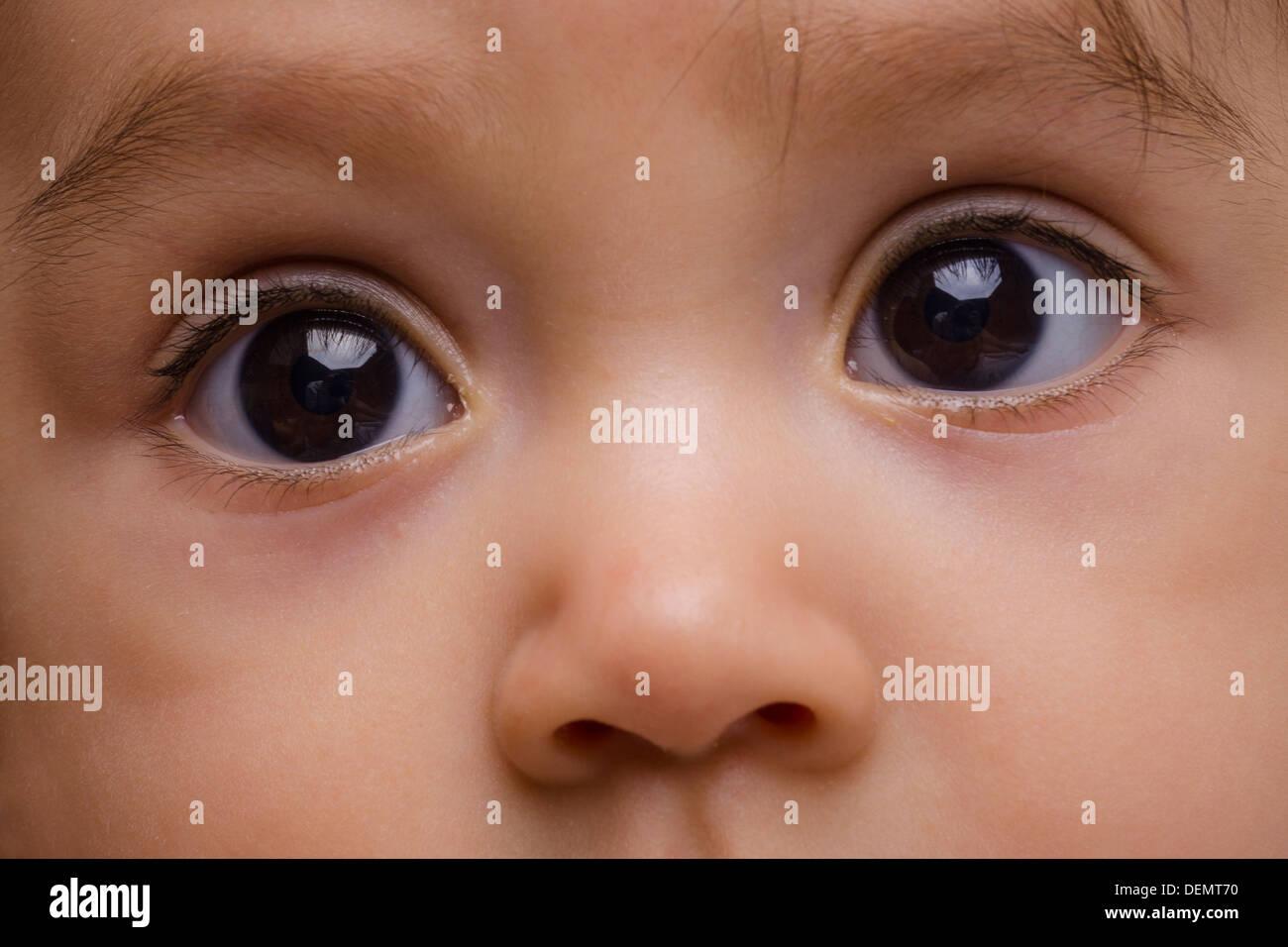 Ojos marrones y la nariz del bebé Imagen De Stock