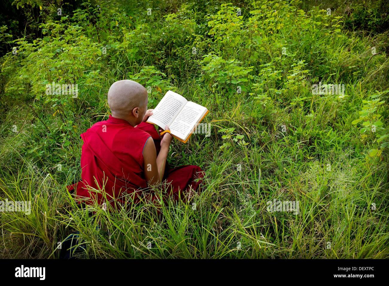 Monja, monasterio budista tibetano, mungod, Karnataka, India, Asia, campamento de refugiados tibetanos, comunidad religiosa, Foto de stock