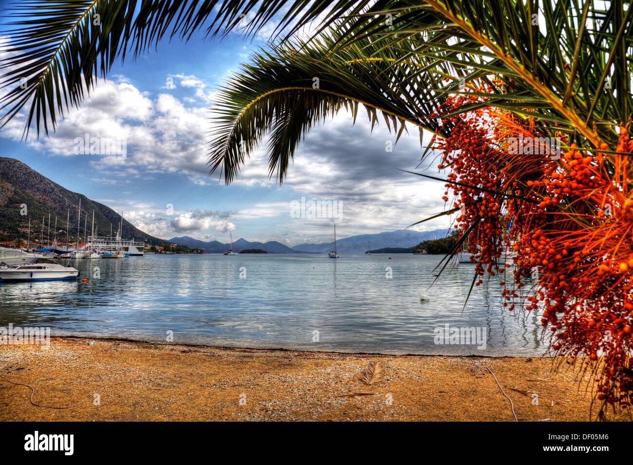 Nidri Nydri Lefkada puerto puerto enmarcadas por palmeras Barcos ...