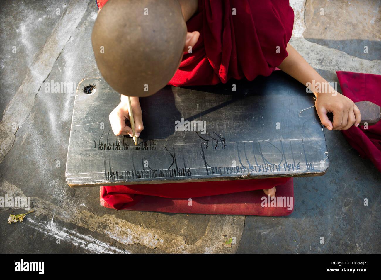 La ONU, ONU monje, monje budista, monje budista tibetano, estudio, lectura, educación, meditación, concentración, magenta, púrpura Foto de stock