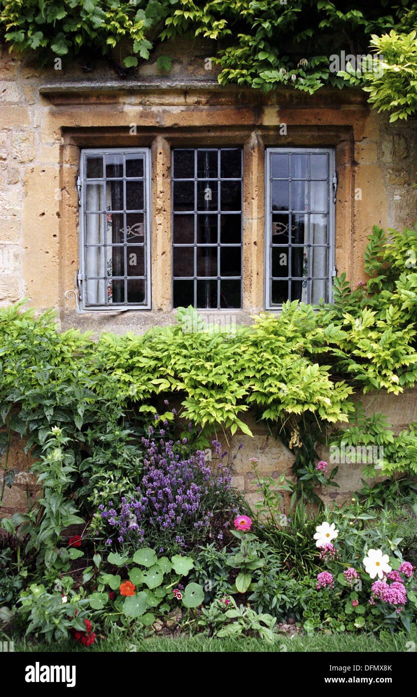 Jard n de flores enmarcando la ventana de hierro forjado for Casa jardin 8 de octubre