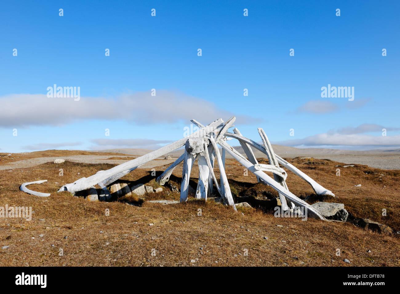 Los Inuit vestigio de la cultura Thule -3000 BC, decidida village, la isla de Cornwallis, Nunavut, Canadá Imagen De Stock