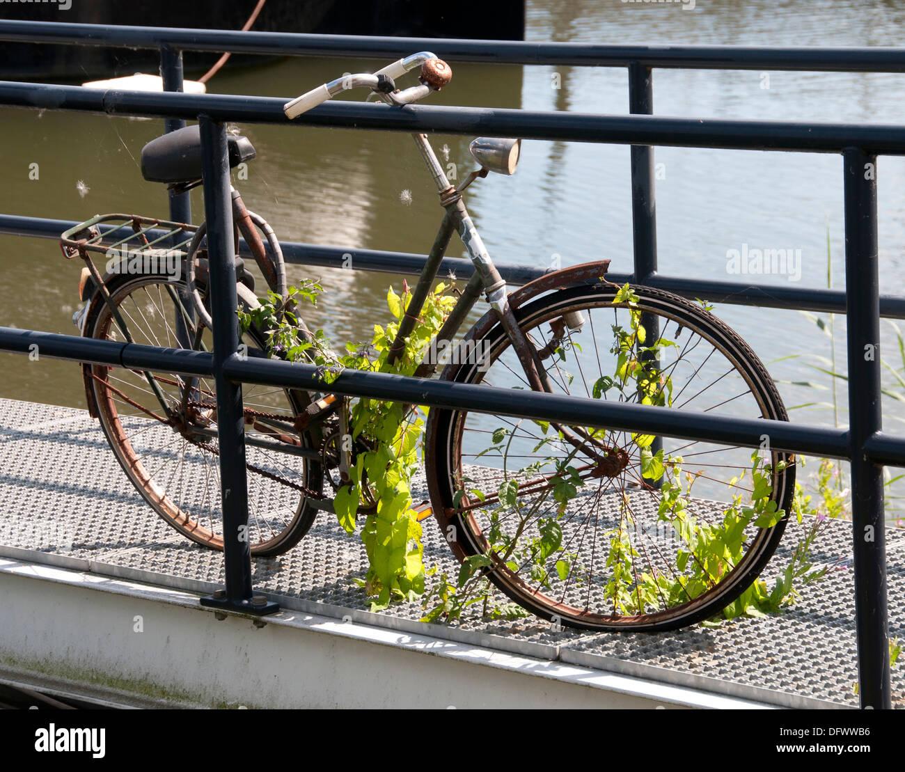 Países Bajos Amsterdam bicicleta bicicleta ciclo ciclos bicicletas bicicletas Ciclismo Ciclismo ciclistas Imagen De Stock