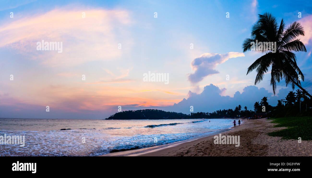 Mirissa Beach, palmera al atardecer sobre el Océano Índico, la costa sur, en la provincia meridional de Sri Lanka, Asia Imagen De Stock